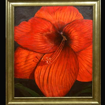 Big Red, Floral Oil Painting created by Carol S Sakai