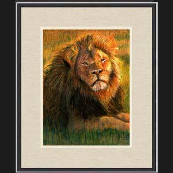 Cecil the Lion, framed pastel portrait by Carol Sakai