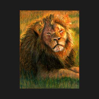 unframed Cecil the Lion pastel portrait by Carol Sakai
